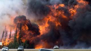 कनाडा के जंगलों में आग