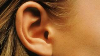 Una oreja