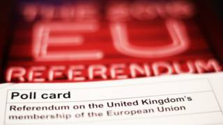 一份关于英国欧盟的民调纸与投票指南。