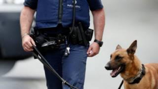 belgium arrest