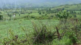 မိုင်းယော်ရှိ ရွာသားတွေ အသတ်ခံရတဲ့နေရာ