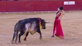स्पेन में बुल फ़ाइट