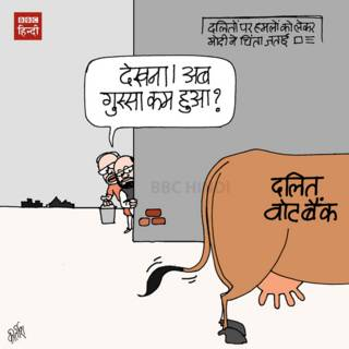 bbc hindi, cartoon, kirtish, bjp, modi, dalit, beef, cow