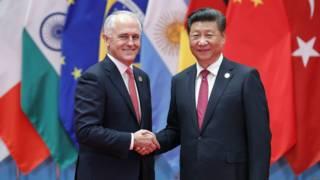 澳大利亚总理特恩布尔与中国国家主席习近平