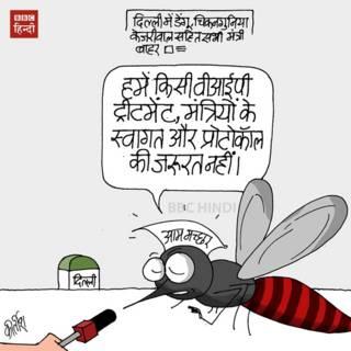 bbc hindi, cartoon, kirtish,kejriwal, chikungunya, dengue, mosquito