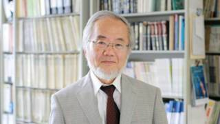 Йосінорі Осумі