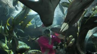 Underwater World Singapore