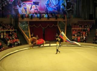 Луганський цирк