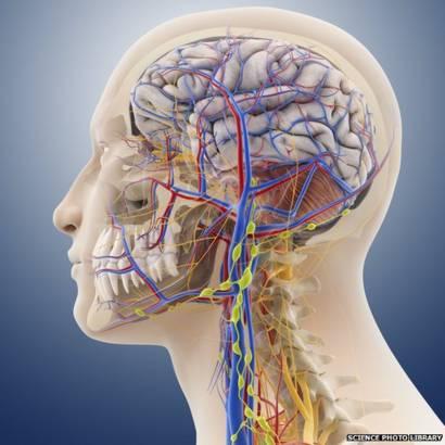 Caída de presión cerebral