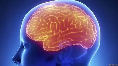 150112153655_brains_human_brains_624x351
