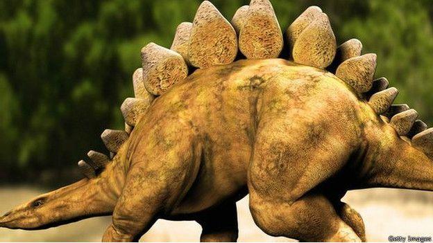 Картинки по запросу Стегозавр картинки, описание стегозавра