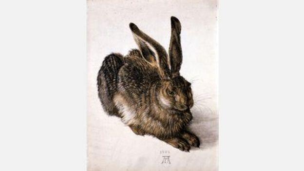 阿尔布雷特·丢勒,《野兔》,1502年(图片来源:Corbis)
