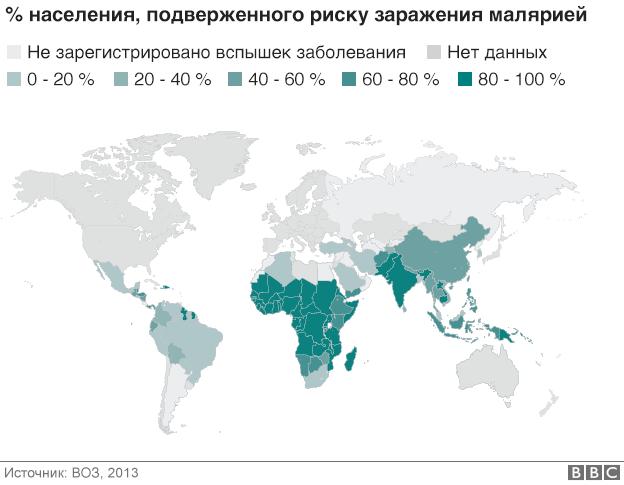 Создание вакцины от малярии: почему это так важно - BBC News ...