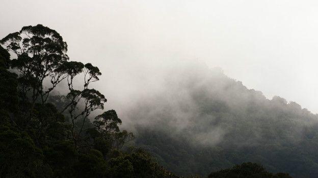Северная Колумбия