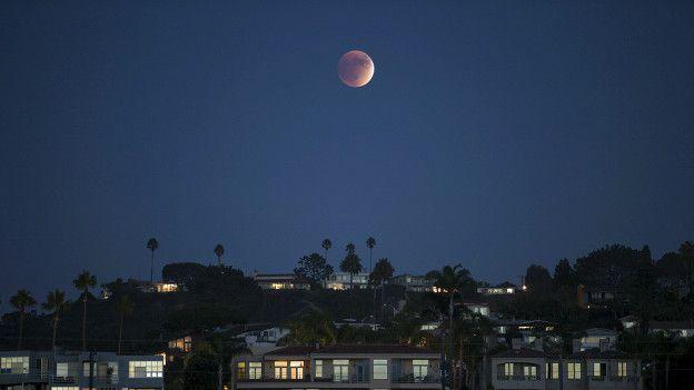 Кровавая Луна Скачать Через Торрент - фото 8