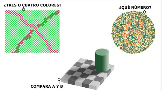 Por qué no todos vemos los colores de la misma forma? - BBC News Mundo