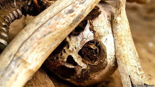Глазницы черепа мумии