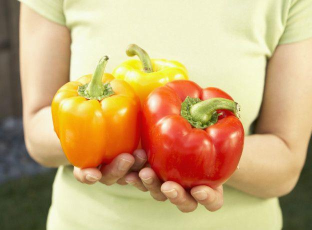 Que son las hortalizas y como se cultivan