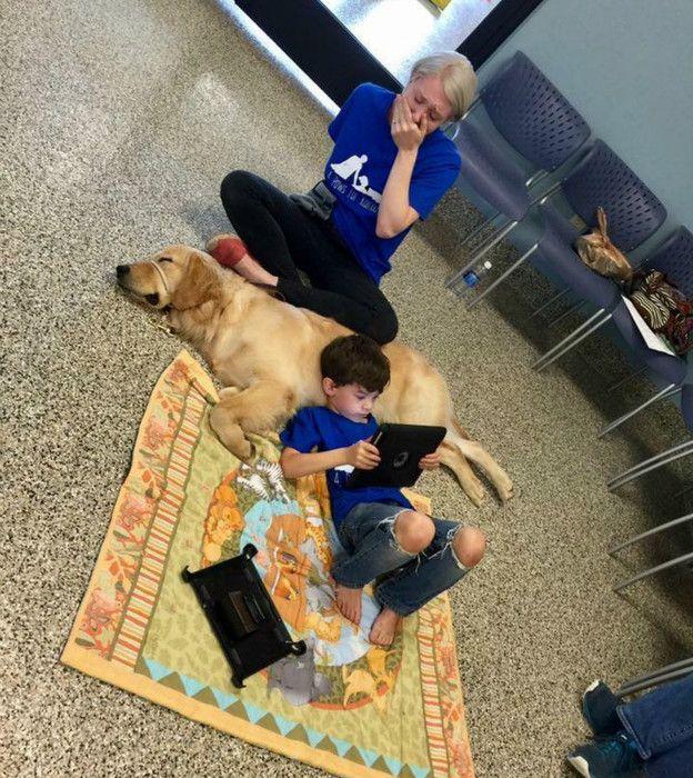 Аутисти дружать тільки із собаками?
