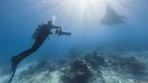 Isla de Lady Elliot, Gran Barrera de Coral
