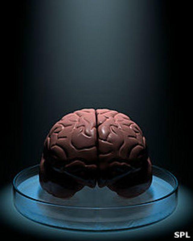 ¿Realmente sólo usamos el 10% de nuestro cerebro?