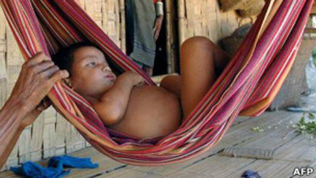 La levadura, poderosa arma en la lucha contra la malaria