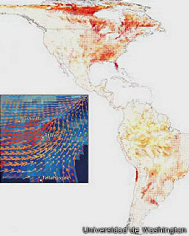 La ruta de escape animal del calentamiento global