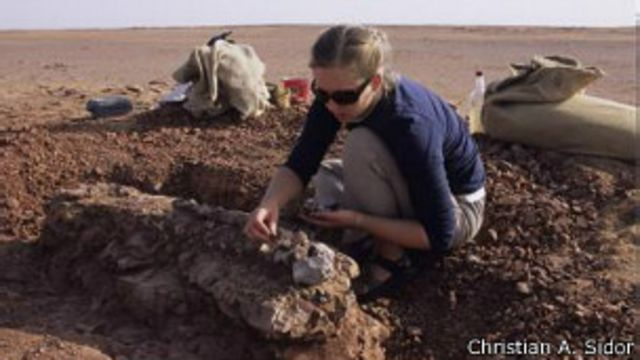 Un reptil muy feo deambuló el vasto desierto ancestral