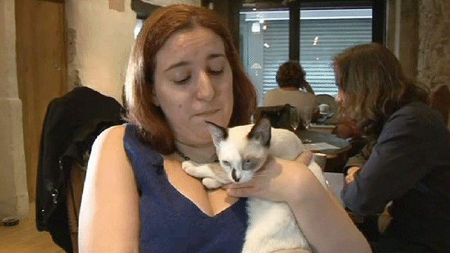 امرأة تحمل قطة في احدى المقاهي الباريسية