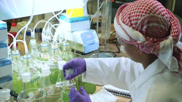 معمل كيمياء في ابو ظبي