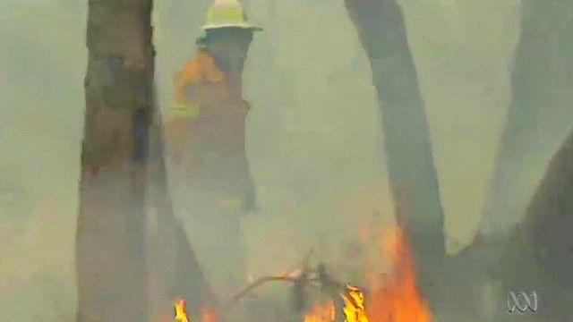 Пожар в австралийском лесу