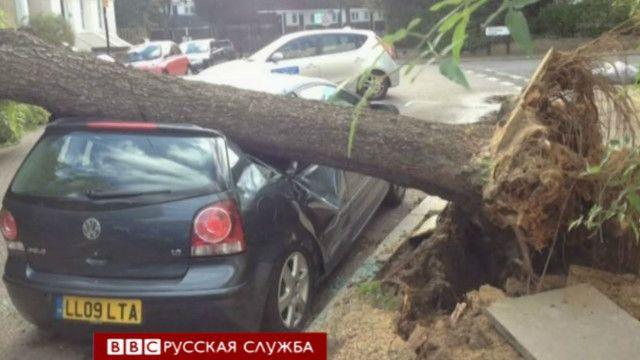 Дерево упало на машину в Британии