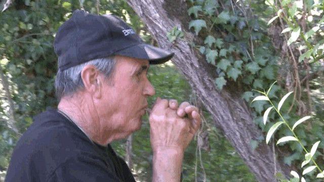 ماركوس رودريجيز