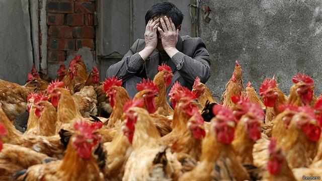"""Aparece en China nueva cepa """"mortal"""" de gripe aviar"""