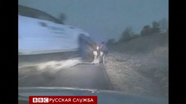 Кадр полицейской видеозаписи