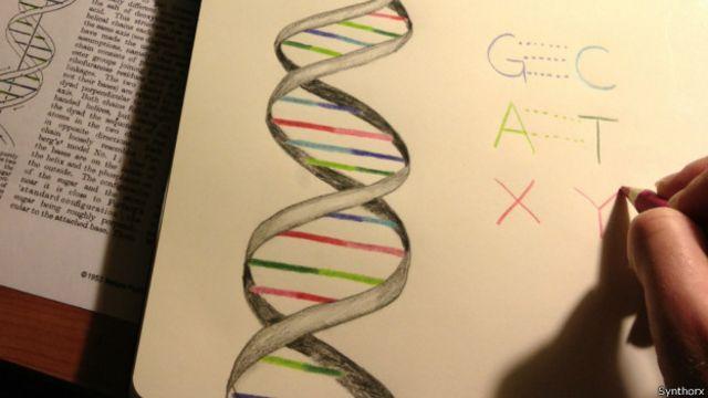 Logran ampliar por primera vez el código genético que crea toda la vida