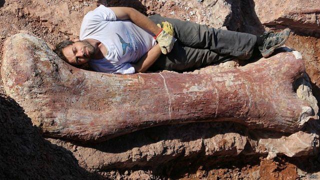 """Hallan en Argentina al """"dinosaurio más grande jamás descubierto"""""""