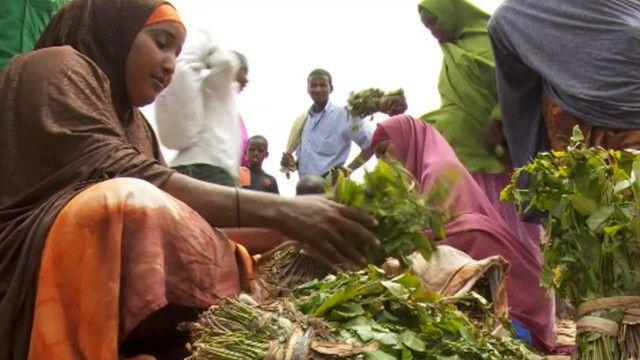 HRW iravuga ko abasirikare ba AMISOM bahohotera abanyasomaliyakazi