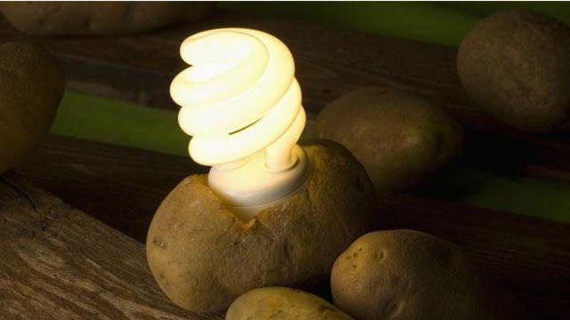 DERGİ - Patatesle dünyayı aydınlatmak