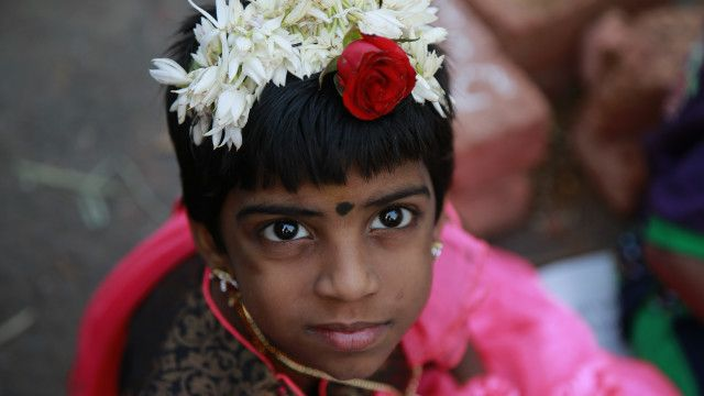 तमिल हिन्दू लड़की, पोंगल, मुंबई, भारत