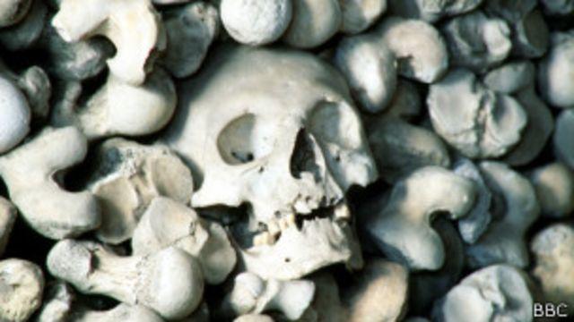 ¿Qué causó la peste negra en Europa?