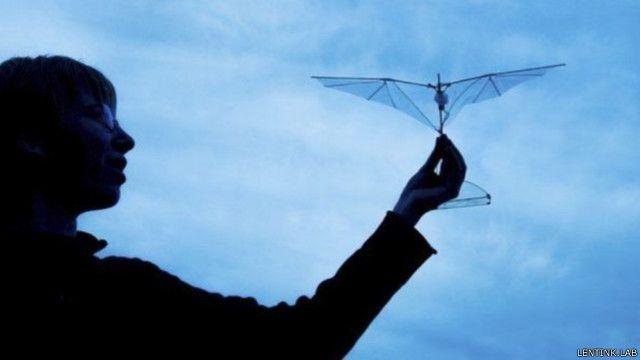 علماء يطورون طائرة بلا طيار بأجنحة رفرافة تقاوم الصدمات