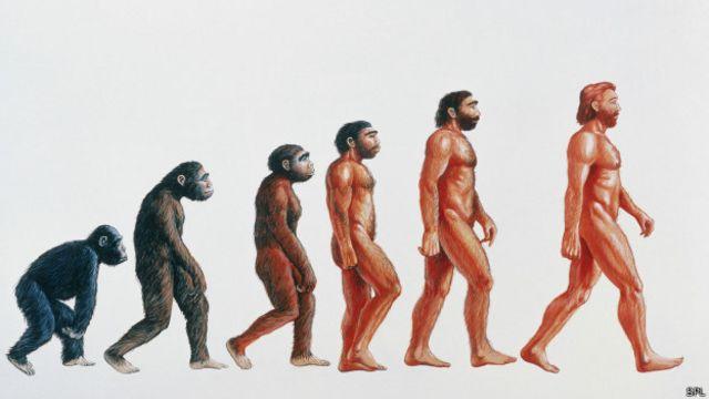 ¿Seguiremos los humanos volviéndonos más altos?