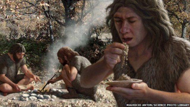 """مهارات طهي الطعام ربما ظهرت """"منذ ملايين السنين"""""""