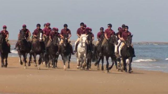 Королевская конная гвардия