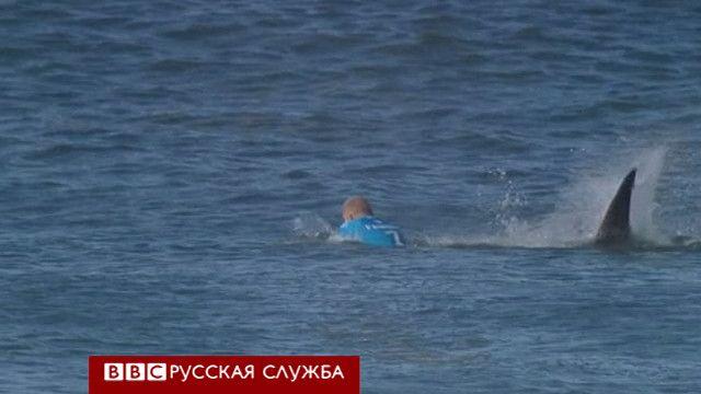 Акула напала на серфера в прямом эфире соревнований