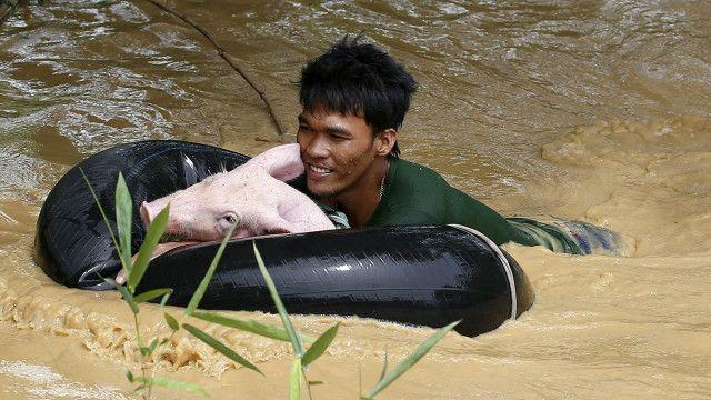 Damnificado del tifón Koppu en Filipinas