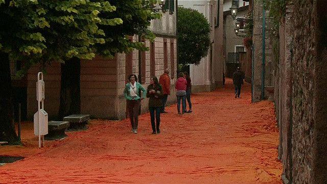 """كيلومترات من القماش الأرجواني تغطي قرية """"سولتسانو"""" الإيطالية"""