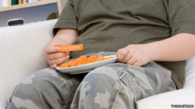 「低收入肥胖家庭」的圖片搜尋結果