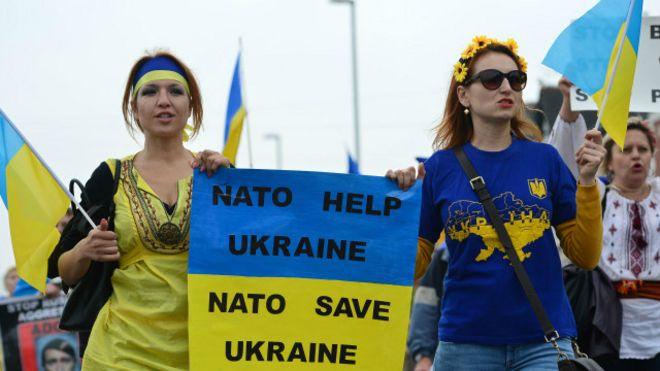 Украина сегодня представит Годовую национальную программу сотрудничества с НАТО - Цензор.НЕТ 5379